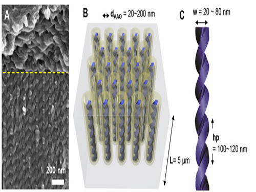 KAIST Develops Core Technology to Synthesize a Helical Nanostructure 이미지