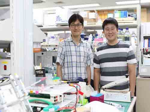 Potential Drug to Cure Ciliopathies 이미지