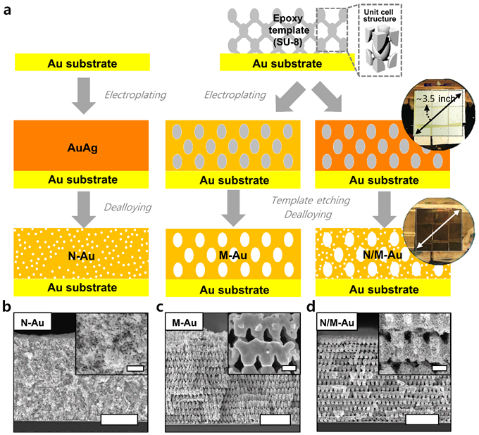 Figure 1. Fabrication procedures of various gold nanostructures through proximity-field nanopatterning (PnP) and electroplating techniques.