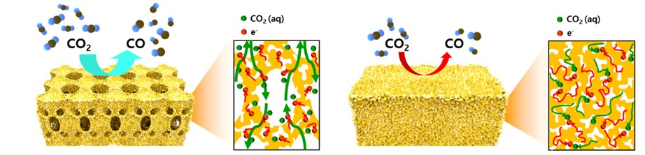 Figure 3. Schematic illustration and the cross-sectional view with the expected reaction pathway for the hierarchically porous gold and nanoporous gold electrodes.