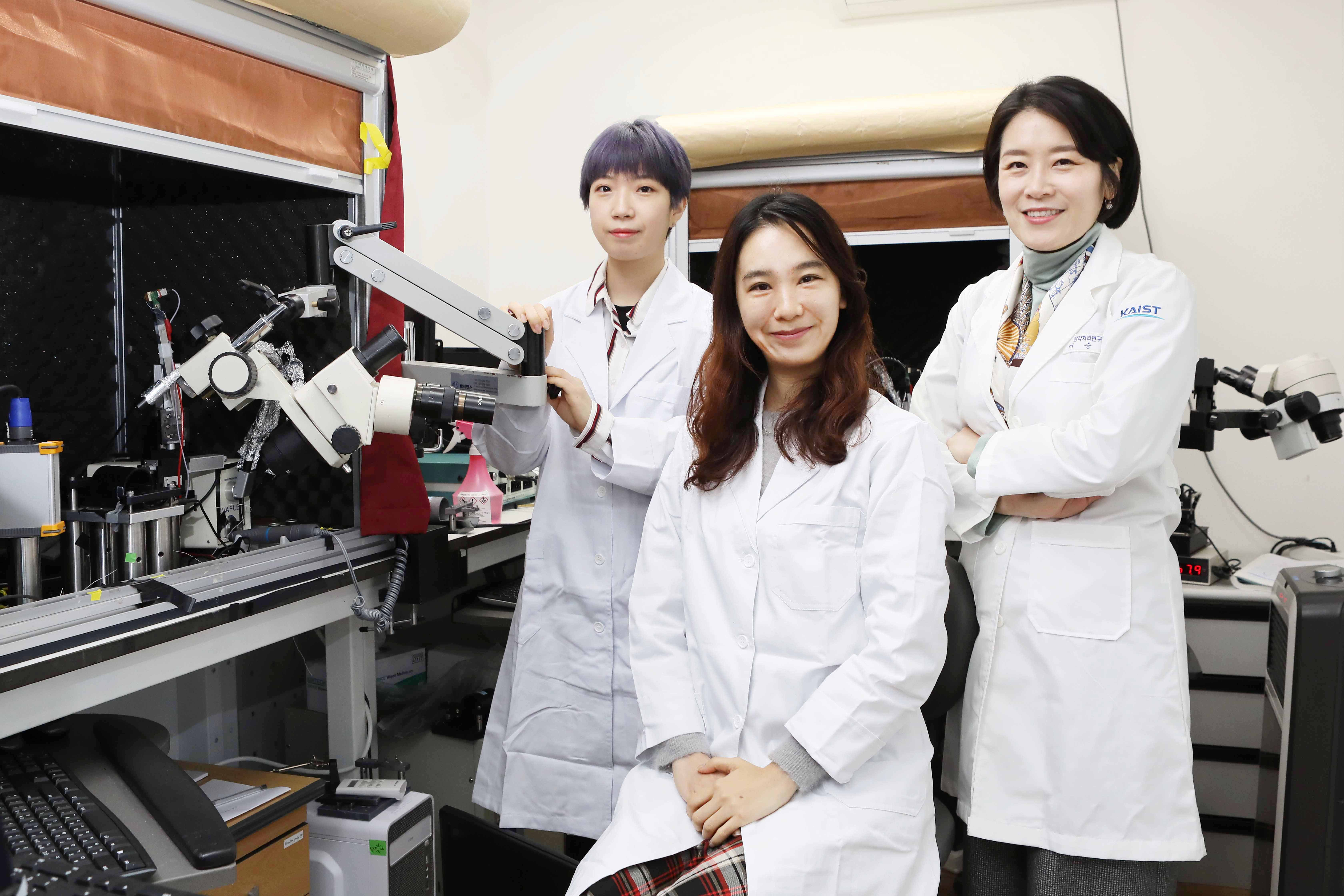 Researcher Yang-Sun Hwang (left), Researcher You-Hyang Song (center), and Professor Seung-Hee Lee (right)