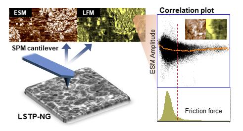 그림 1. 다양한 기능을 활용한 원자간력 현미경 분석 기술의 모식도