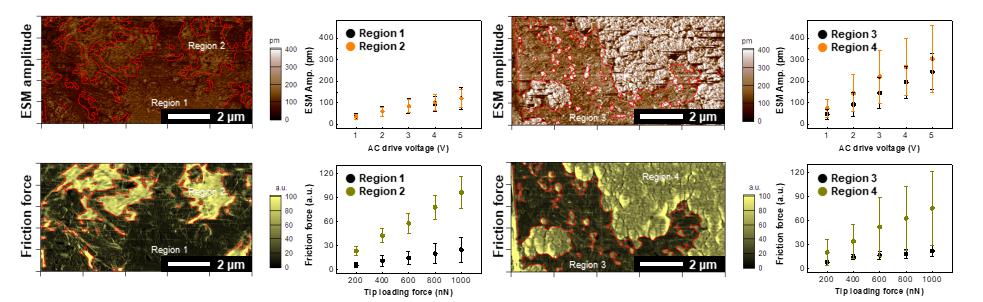 그림 2. 전극 표면에서 구별된 영역들을 나타내는 이미지와 각 영역에서 감도 차이를 보여주는 경향 그래프