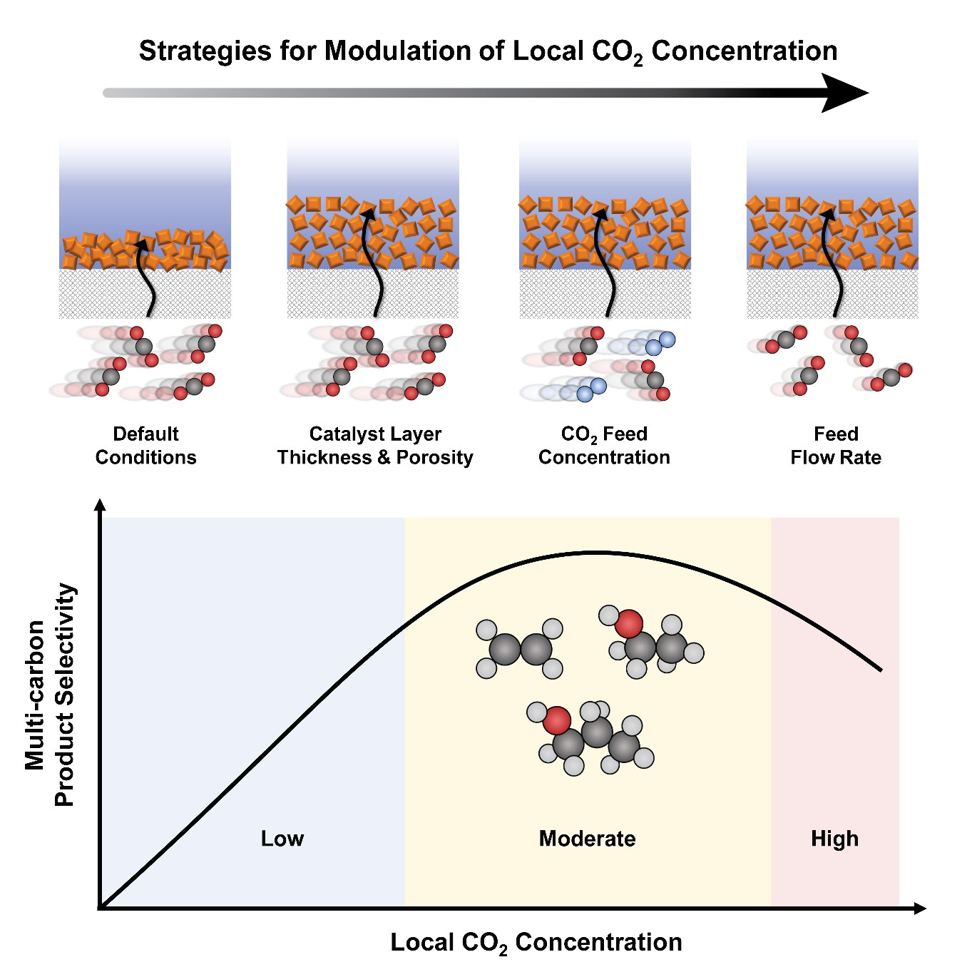 Figure. Three strategies employed in this study to modulate local CO2 concentration in a catalyst layer (top) and the relationship between local CO2 concentration and the selectivity for multi-carbon products (bottom). Note that maximum selectivity is achieved at a moderate local CO2 concentration.