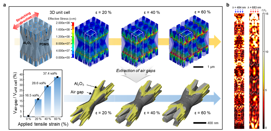 Figure 2. Mechanical and optical simulations of the 3D scatterer
