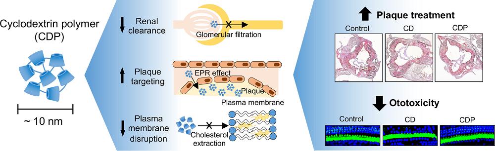 그림 1. 사이클로덱스트린 폴리머 나노입자의 장점 및 치료 효과를 보여주는 모식도