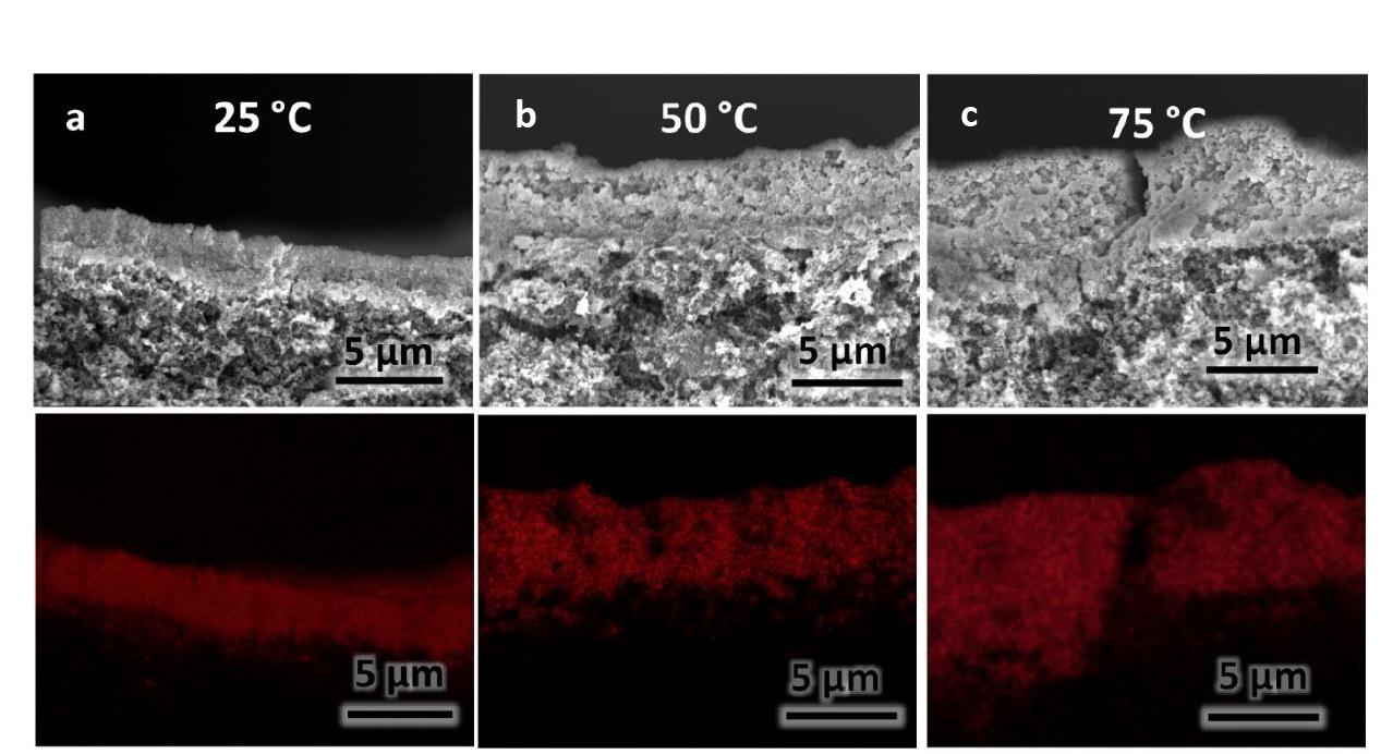 그림 2. 이번 연구에서 사용된 (a) 25도, (b) 50도, (c) 75도의 온도에서 적층된 다양한 두께의 구리 촉매 층의 전자 주사 현미경 단면 이미지와 그에 해당하는 에너지분산형 분광분석 이미지. 하단 이미지의 붉은 점은 구리 촉매 층을 나타낸다. (스케일 바: 5 µm)