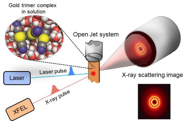 Figure 1. A schematic of the femtosecond x-ray scattering technique.