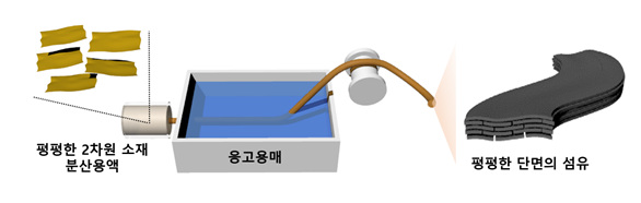 그림1. 2차원 소재의 자발적 평탄화 현상을 통해 제조되는 납작한 그래핀 섬유 제작과정 모식도