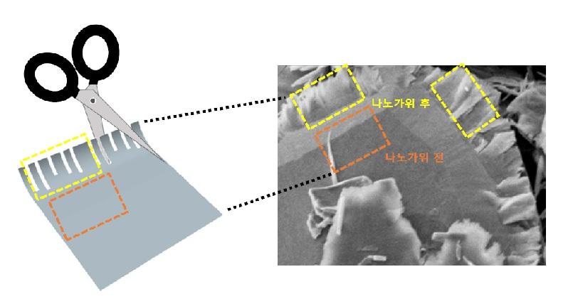 그림 1. 2차원 신소재를 1차원 리본으로 오려내는 나노 가위 기술 모식도