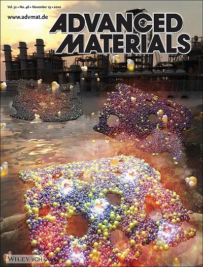 그림 4. 재료분야 세계적 국제 학술지 'Advanced Materials' 2020년도 11월호 속표지 이미지