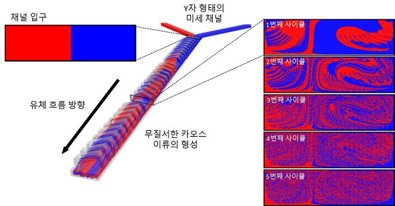 그림 2. 미세채널 내에서 유체의 흐름을 추적 가능한 전산모사 모델