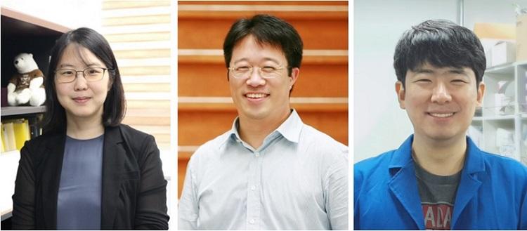 (왼쪽부터) 생명과학과 정현정 교수, 화학과 이해신 교수, 나노기술대학원 이주훈 박사과정