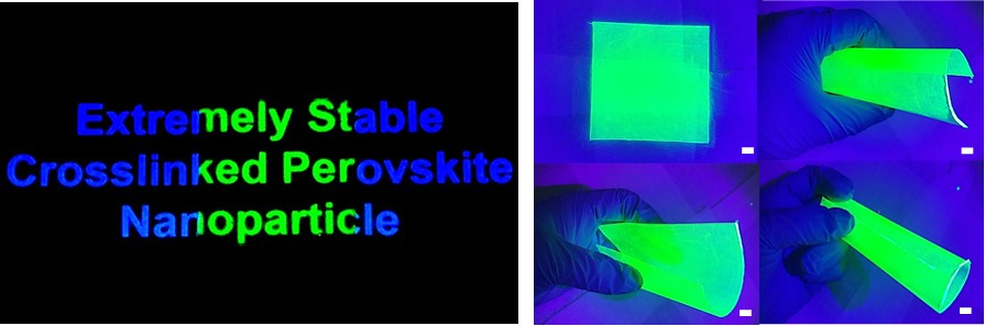 Figure 1:Photographs of large-area siloxane-encapsulated perovskite nanoparticle films. The left one indicates the perfect color converting property on commercial mobile phone screens. The right one presents color converted films under versatile bending states.