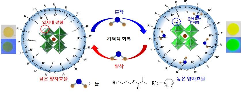 그림 1. 이번 연구에서 개발된 실록산 재료에 의해 캡슐화된 페로브스카이트 나노 입자 복합체의 개념도 및 사진