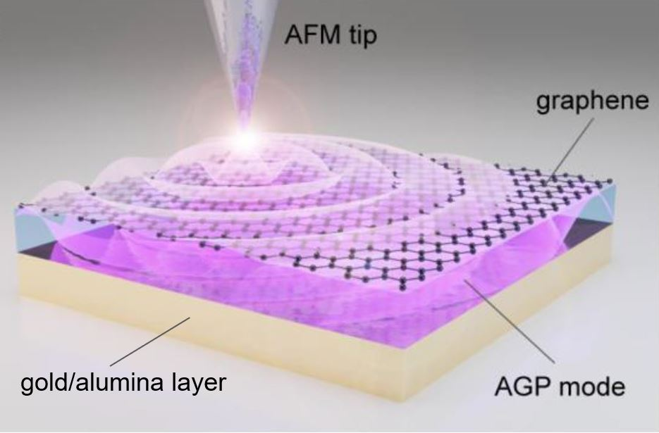 Figure. Laser-illuminated nano-tip excites the acoustic graphene plasmon in the layer between the graphene and the gold/alumina.