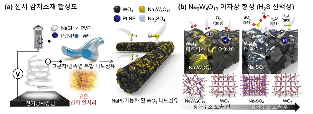 그림 1. 나트륨과 백금 촉매가 기능화된 텅스텐 산화물 나노섬유 합성 모식도